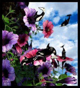 """Ocean Invasion #2: Nectar for the Orcas"""