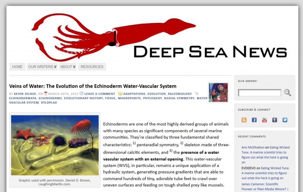 Veins of Water: The Evolution of the Echinoderm Water-Vascular System