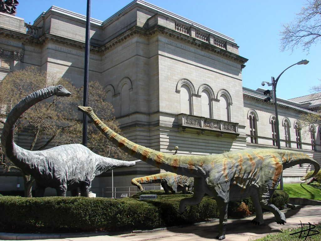 Dippy & Friends, Daniel D. Brown, 2012