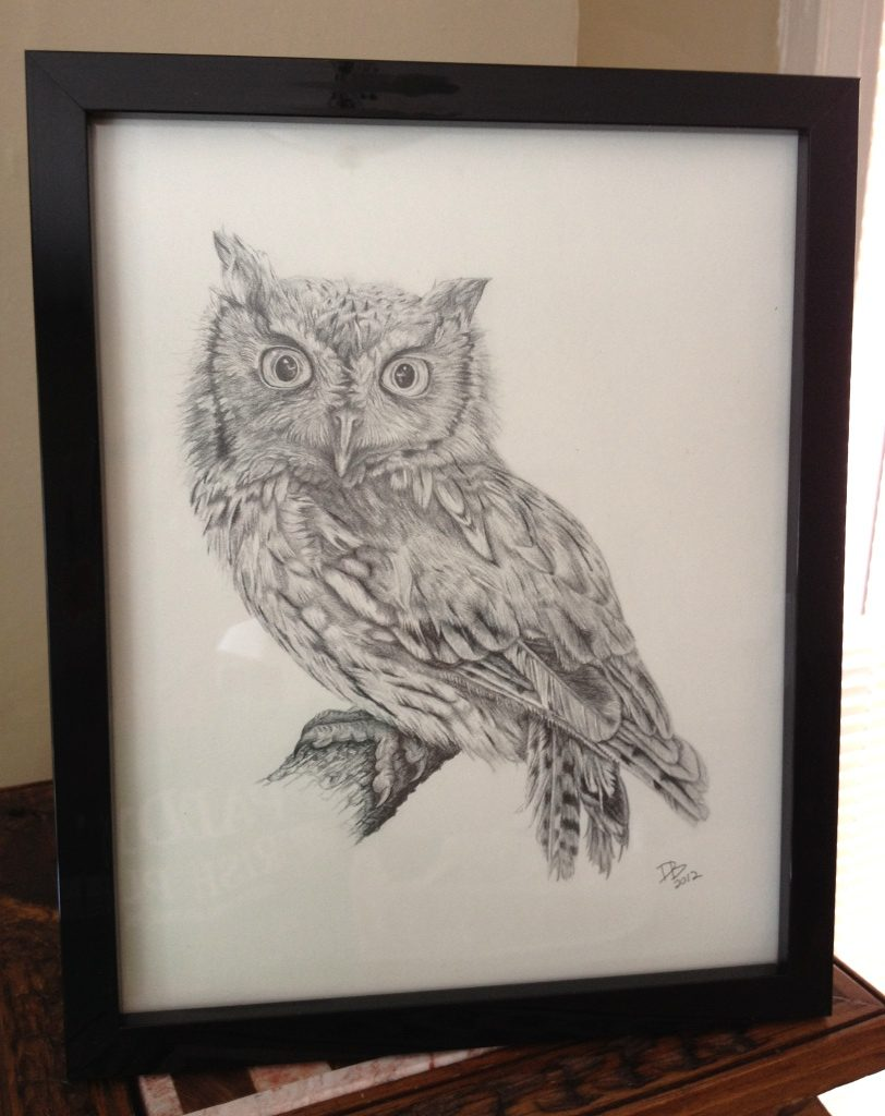 Eastern Screech Owl, Daniel D. Brown, 2012, pencil - Framed