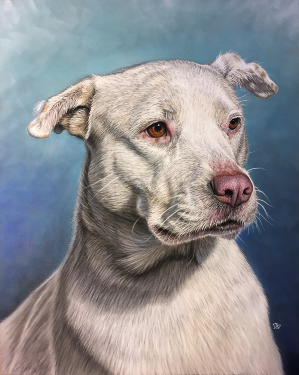 """Kaimana"" 2015, Daniel D. Brown, pastel pencil"