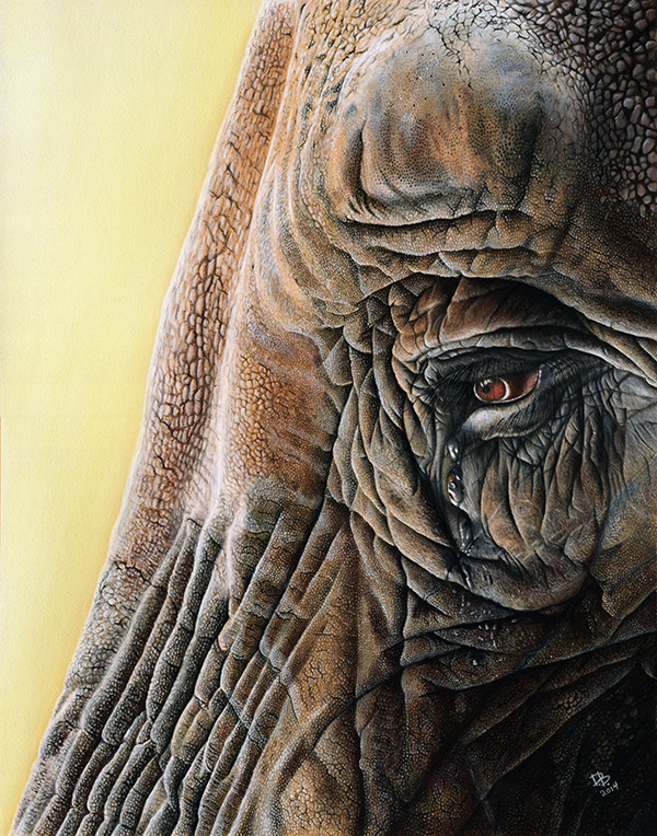 """Sentience"" Daniel D. Brown, 2014, pastel pencil, 11 x 14"""