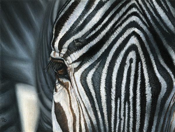 """""""Stripes"""""""