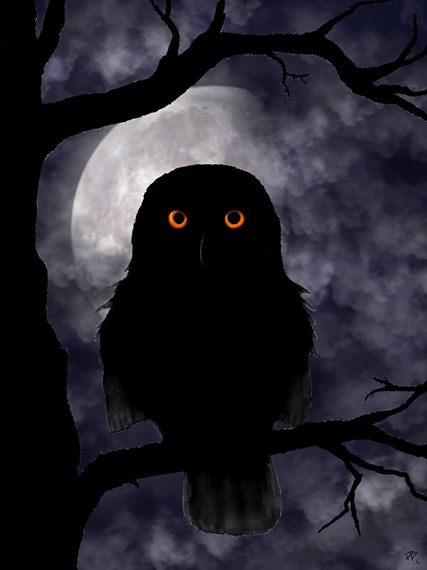 NightOwl_DanielDBrown_2015_600