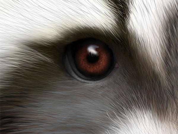 Masked_DanielDBrown_2016_Detail2_600