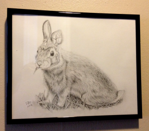 Rabbit, Daniel D. Brown, Pencil, 2012