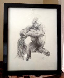 Gorilla, Daniel D. Brown, 2012, Pencil - framed