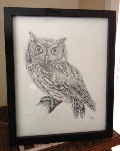Eastern Screech Owl, Daniel D. Brown, 2012, pencil - Framed